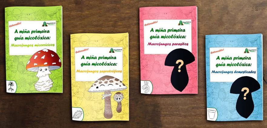 Libros-niños-Mycogalicia